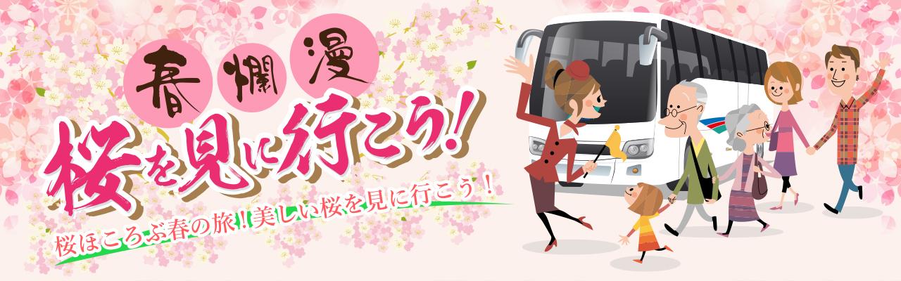 春爛漫 桜を見に行こう!
