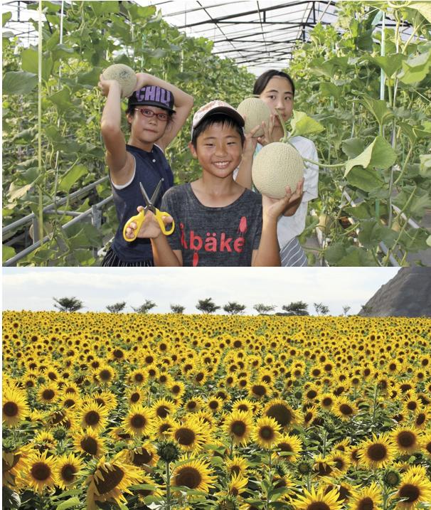 7月18日(木)<br>中日新聞 夕刊 掲載ツアー
