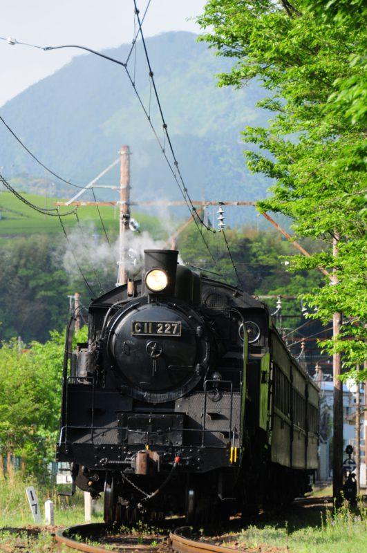 [日帰り]大井川SL列車とKADODE OOIGAWAのランチビュッフェ